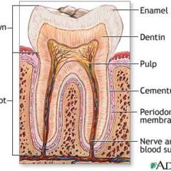 Eliminate Food Related Sensitive Teeth